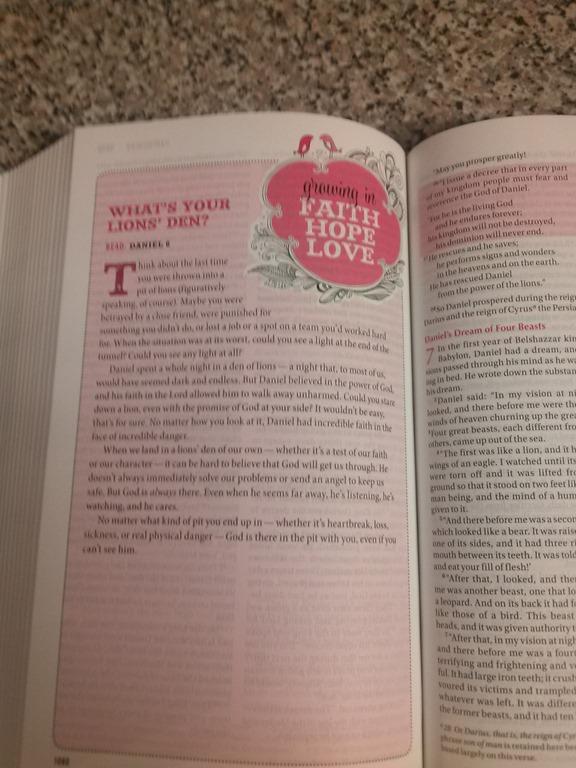 Zondervan Teen Bible 25