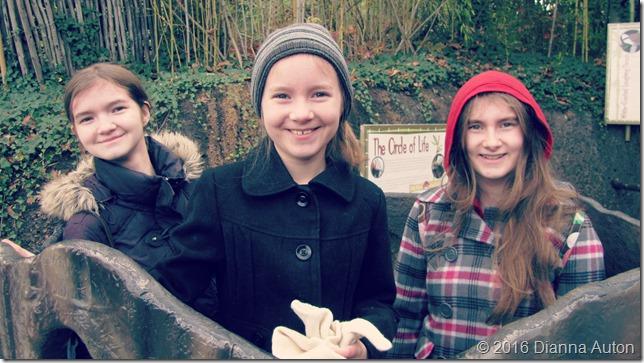 bonus zoo girls in tree 056