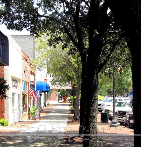 Georgetown street 2 wm[2]