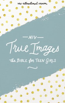 Zondervan's NIV True Images Bible review